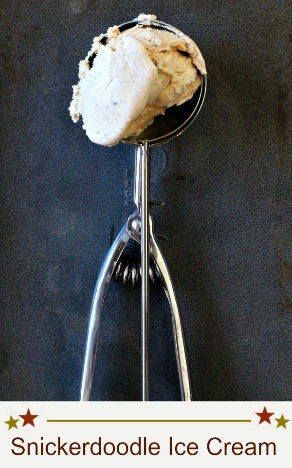 homemade snickerdoodle ice cream