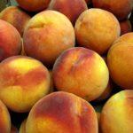 Salsa made with peaches. Peach de gallo.