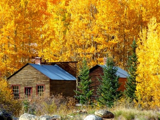 Cabin at St. Elmo Colorado with Fall Aspen Trees. A photo from my Great Northern Bean Soup recipe.