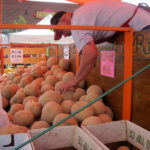 Rocky Ford Melons at Highlands Ranch Farmer's Market