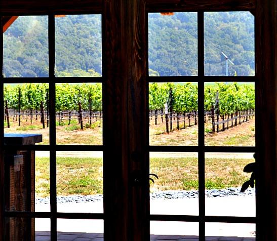 Tasting room at Sanford Winery