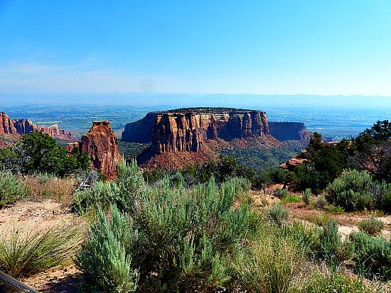 Sagebrush and Mesa at Colorado National Monument