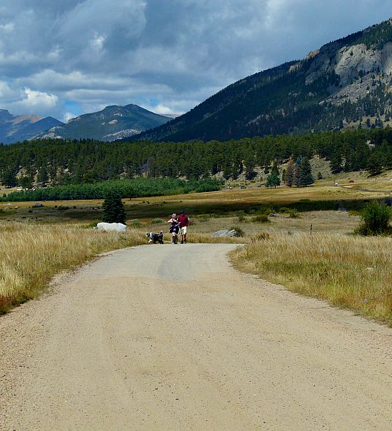 Dog Friendly Trails In Rocky Mountain National Park